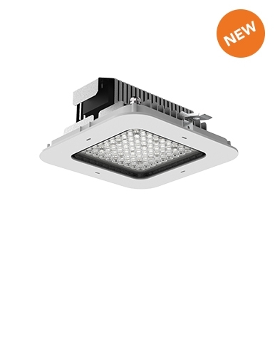Led floodlight for indoor and outdoor applications